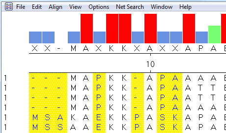 MegAlign Sequence Alignment Report