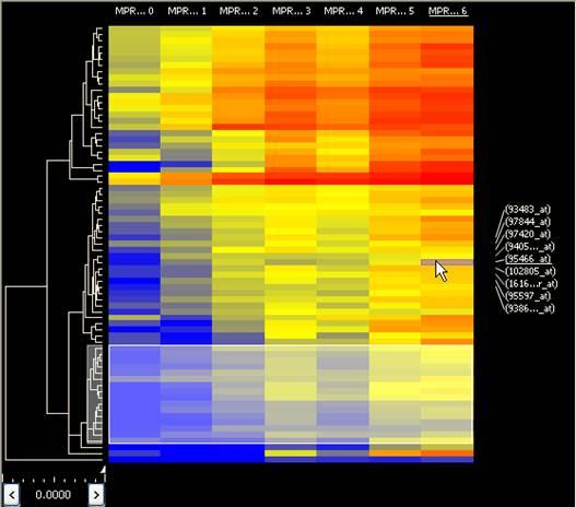 Heat Map Gene Tree