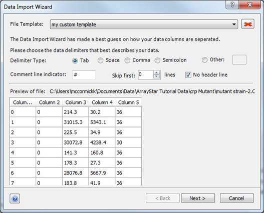 File Templates for Data Import Wizard