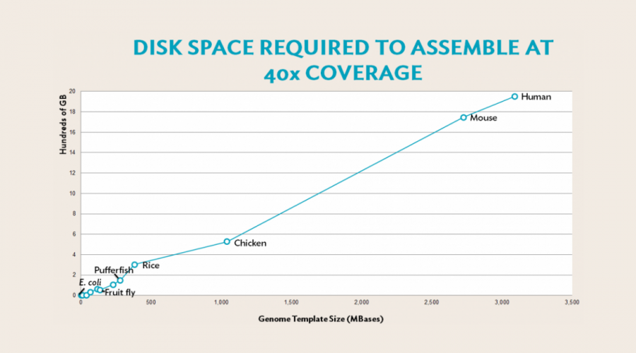 How much disk space do I need for my templated genome assembly?