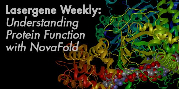 Function Prediction in NovaFold