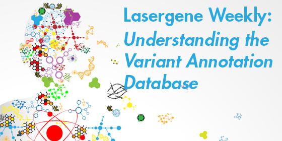 Understanding the Variant Annotation Database